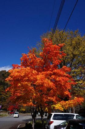 2012.10.27.8.jpg
